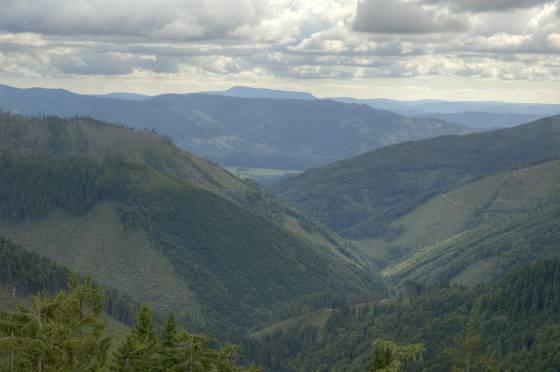 ... ve východní části jsou hřebeny zalesněnější, údolí temnější